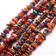 Dyed Chip Natural Freshwater Shell Beads Strands, Colorful, 1~7mm wide, 9~17mm long, hole: 1mm(SHEL-E355-14)