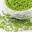 Glass Seed Beads, Opaque Colours Seed, Round, GreenYellow, 2mm in diameter, hole:1mm