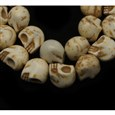 Synthetic Howlite Bead Strand, Dyed, Skull, White, 10x12x12mm, Hole: 1mm(TURQ-12x10-5)