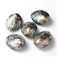 (Clearance Sale)Oval Paua Shell Beads, Paua Shell, 36~40mm wide, 50~65mm long, 16.5~20mm thick, hole: 1mm(SSHEL-F0008-01)