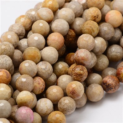 Faceted Round Natural Chrysanthemum Stone/Fossil Coral Bead Strands, 8